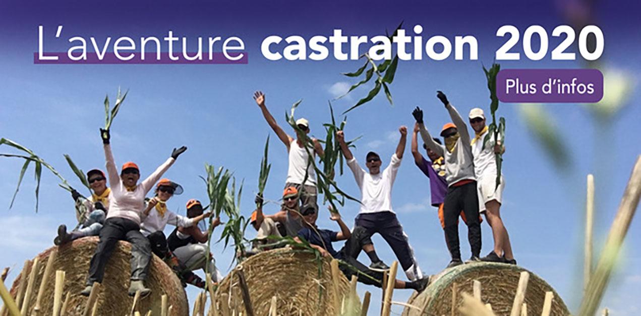 Aventure castration 2020